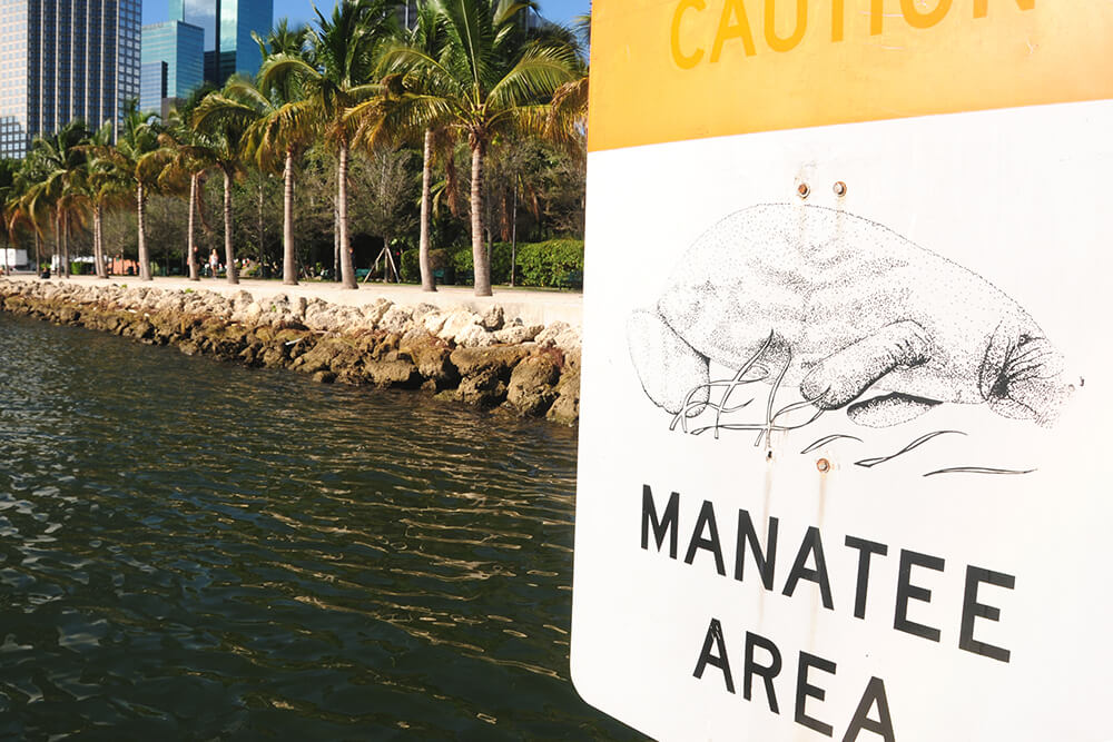 "A sign reads ""Caution - Manatee Area"""