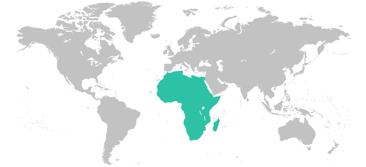 Map of the African region of the world