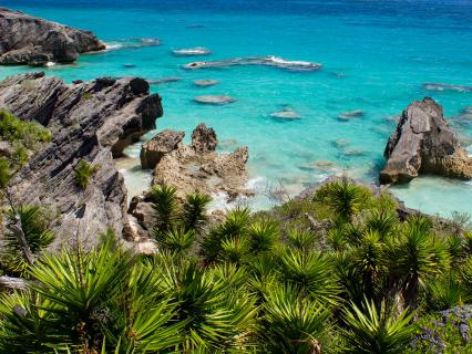 Rocky coast of Bermuda by Horseshoe Bay Beach and Wariwick Beach.