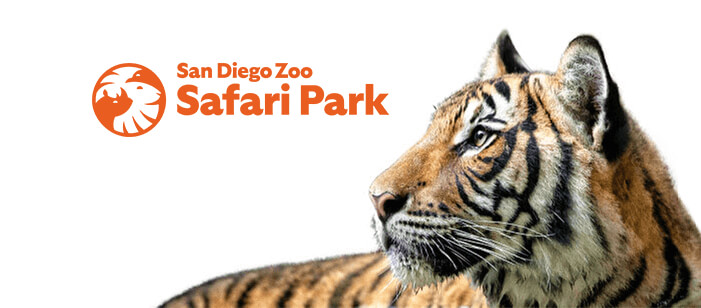 Photo of a tiger with Safari Park logo.